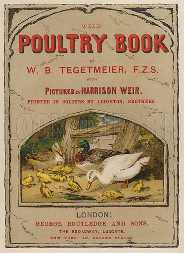 Title-page illustration for The Poultry Book by W B Tegetmeier (George Routledge, 1873).