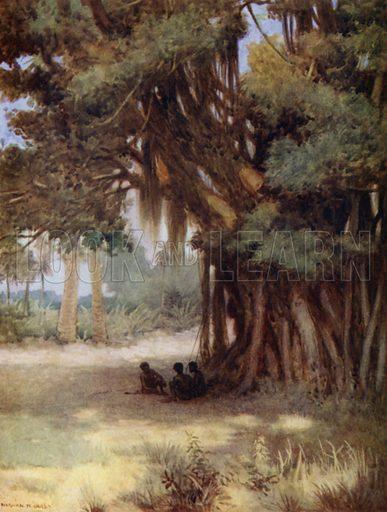 Beneath a Banyan Tree, Malekula Island, New Hebrides. Illustration for The Savage South Seas described by E Way Elkington (A&C Black, 1907).