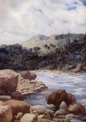 The Rapids, Williams River, Island of Eromanga, New Hebrides. Illustration for The Savage South Seas described by E Way Elkington (A&C Black, 1907).
