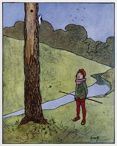 The woodpecker. Illustration for Through the Wood, A Picture Book, illustrated by John Hassall, written by Harold Avery (Thomas Nelson, c 1907).