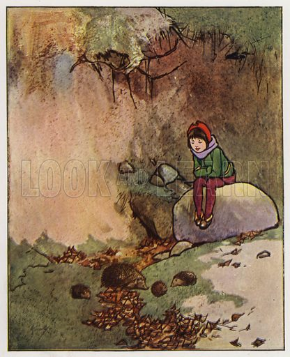 The hedgehog. Illustration for Through the Wood, A Picture Book, illustrated by John Hassall, written by Harold Avery (Thomas Nelson, c 1907).