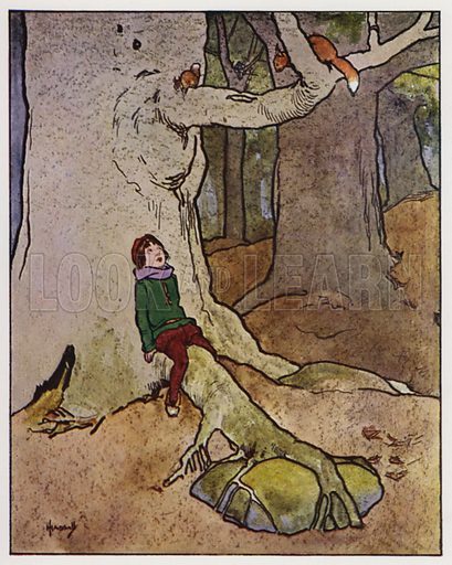 The squirrel. Illustration for Through the Wood, A Picture Book, illustrated by John Hassall, written by Harold Avery (Thomas Nelson, c 1907).
