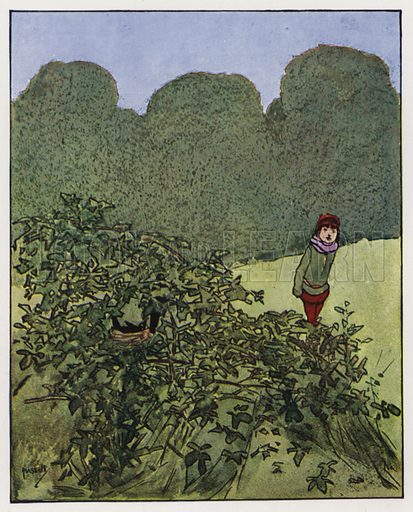 The blackbird. Illustration for Through the Wood, A Picture Book, illustrated by John Hassall, written by Harold Avery (Thomas Nelson, c 1907).