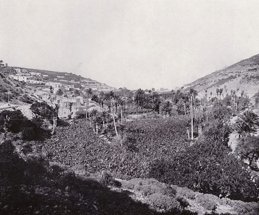 View on the Monte Road. Illustration for Souvenir de Las Palmas (np, c 1900).  Las Palmas is a capital of Gran Canaria, one of Spain