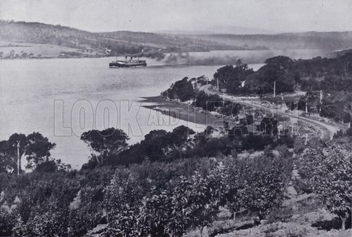 Near Rosevears, River Tamar. Illustration for Picturesque Launceston and Surrounding Tourist Resorts, photographed by S Spurling (Spurling, c 1915).