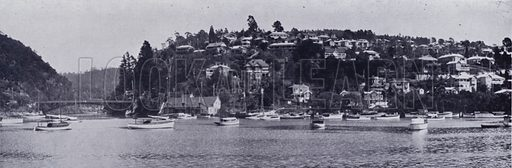 Trevallyn from the River Tamar. Illustration for Picturesque Launceston and Surrounding Tourist Resorts, photographed by S Spurling (Spurling, c 1915).