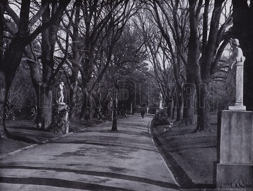 Fitzroy Gardens in Winter, showing Poplar Avenue and Statuary. Illustration for a souvenir booklet on Melbourne, Australia (Artistic Arts, c 1915).  Photos unless indicated credited to Darge Studios.