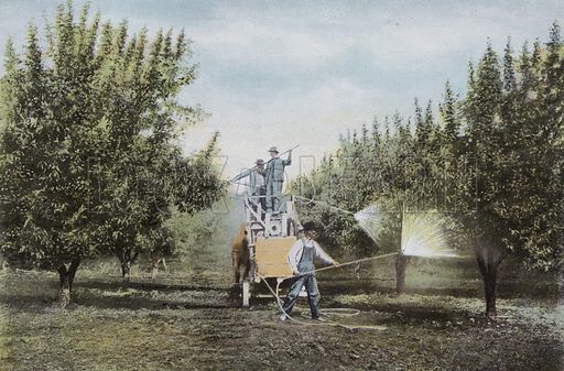 Spraying an Oregon Orchard. Illustration for a booklet about Oregon The Land of Opportunity (Portland Chamber of Commerce, 1911).