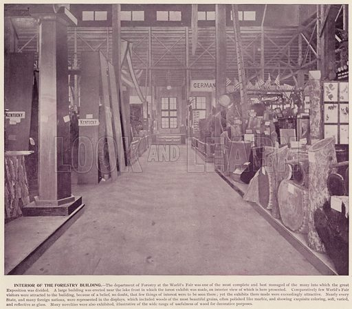 Interior of the Forestry Building. Illustration for The Magic City, a Massive Portfolio of Original Photographic Views of the Great World's Fair edited by J W Buel (Historical Publishing, 1894).