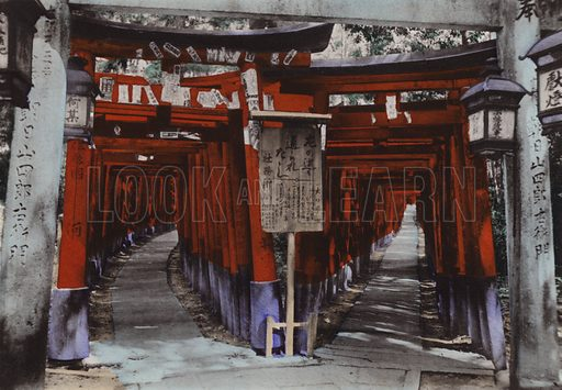 Torii Avenues, Shrine of Fushimi near Kyoto. Illustration for Selected Pictures of Mikado's Empire, Fine Souvenir for Visit to Japan, Coloured by Hand (np, c 1912).