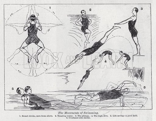 The movements of swimming. Illustration for The Harmsworth Encylopaedia (c 1922).