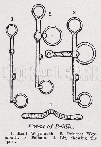 Forms of bridle. Illustration for The Harmsworth Encylopaedia (c 1922).