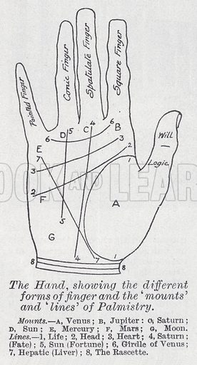 The hand, showing the different forms of finger and the 'mounts' and 'lines' of palmistry. Illustration for The Harmsworth Encylopaedia (c 1922).