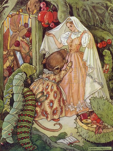 Thumbkin. Thumbkin's wedding clothes were all ready. Illustration for Stories from Hans Andersen (Blackie, c 1950).