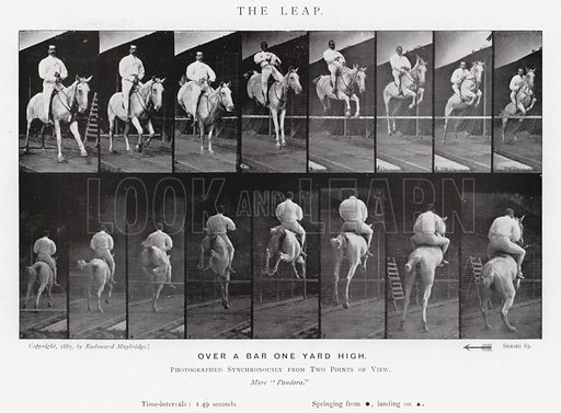 The Leap. Illustration for Animals in Motion, An Electro-Photographic Investigation of Consecutive Phases of Muscular Actions, by Eadweard Muybridge, Commenced 1872, Completed 1885 (5th impression, Chapman & Hall, 1925).