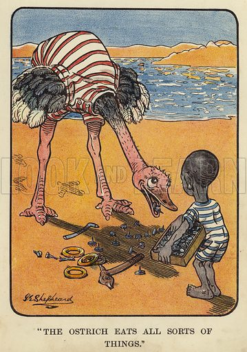 """""""The ostrich eats all sorts of things."""" Illustration for Bubbles in Birdland by Harold Simpson illustrated by G E Shepheard (Greening, 1908)."""