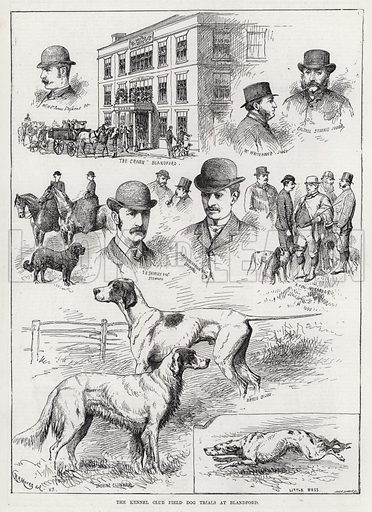 The Kennel Club Field Dog Trials at Blandford. Illustration for The Illustrated Sporting and Dramatic News, 12 May 1883.