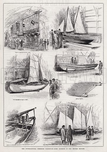The International Fisheries Exhibition, Some Exhibits in the British Section. Illustration for The Illustrated Sporting and Dramatic News, 19 May 1883.