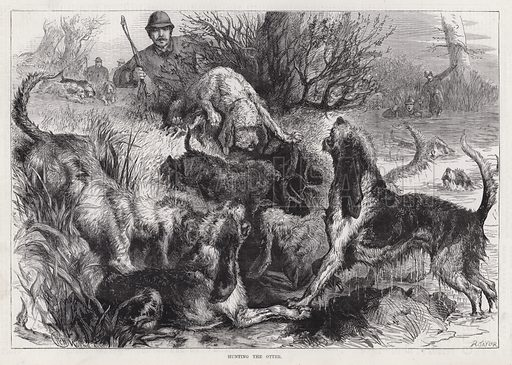 Hunting the Otter. Illustration for The Illustrated Sporting and Dramatic News, 9 June 1883.