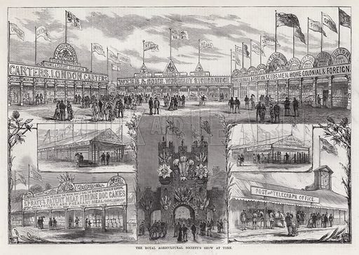 The Royal Agricultural Society's Show at York. Illustration for The Illustrated Sporting and Dramatic News, 28 July 1883.