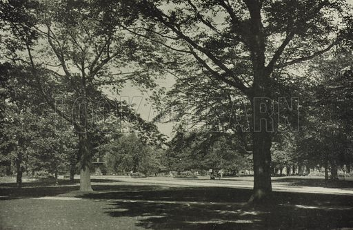 Allan Gardens, Corner of Sherbourne and Carlton Streets. Illustration for Toronto Illustrated, Published for the Department of Industries and Publicity (Ernest E Fligg and Albert E Hacker, 1908).