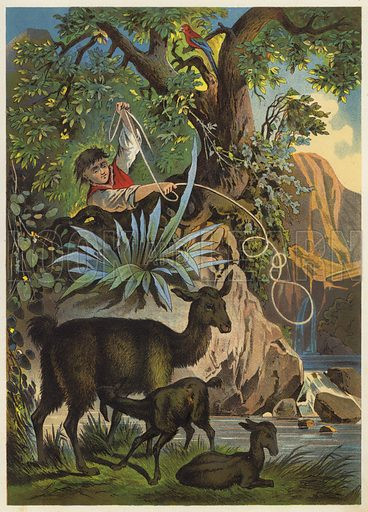 Illustration for an unidentified German edition of Robinson Crusoe, c 1880.