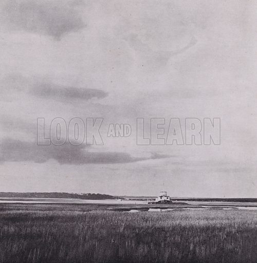 Brownsea Island. Illustration for Unspoiled Dorset, A Book of Photographs by S W Colyer (Ward Lock, c 1940).  Gravure printed.
