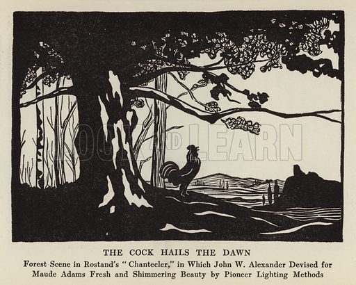 """The Cock hails the Dawn. Forest Scene in Rostand's """"Chantecler,"""" in Which John W Alexander Devised for Maude Adams Fresh and Shimmering Beauty by Pioneer Lighting Methods. Illustration for Our American Theatre by Oliver M Sayler with drawings by Lucie R Sayler (New York, Brentano's, 1923)."""