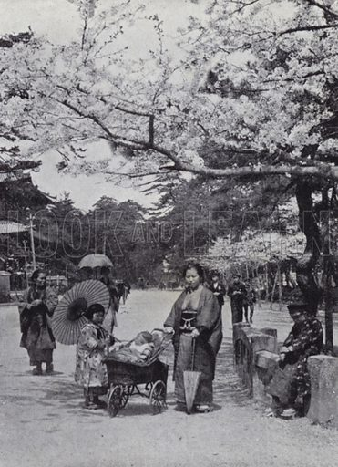 Under the cherry-blossom in Shiba Park, Tokio. Illustration for Things Seen in Japan by Clive Holland (Seeley Service, 1914).