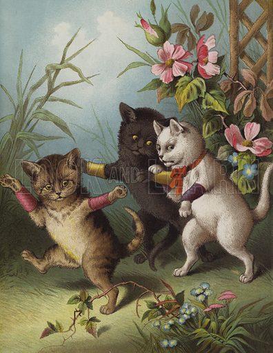 Three little kittens in a garden