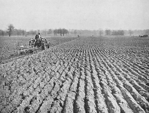 A Wallis tractor ploughing up Regent's Park, London for the purposes of growing food during WW1.  Illustration for Conquest Vol III (November 1921 - October 1922).