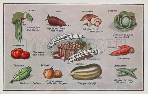 The Language of Vegetables.  Comic postcard on a food related theme.  One of a collection of over 300.  Early 20th century.