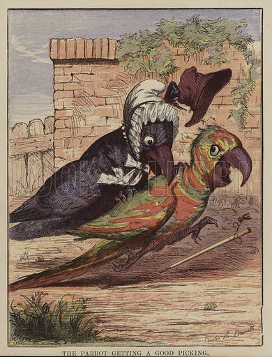 The Faithless Parrot.  Illustration for The Comical Story Book (George Routledge, c 1880).