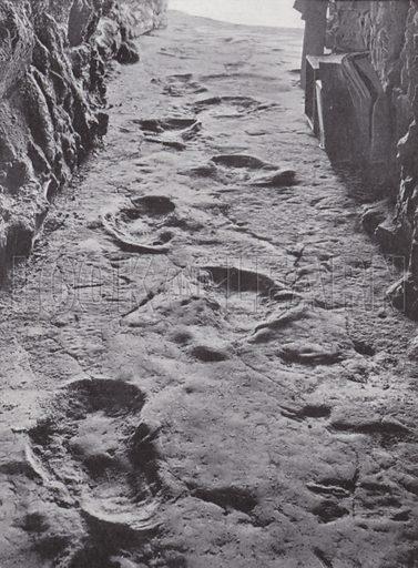 Fossilised mammoth footprints, Carson City, Nevada, USA