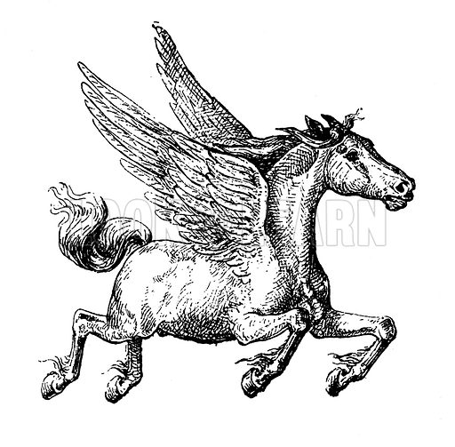 Pegase / Pegasus