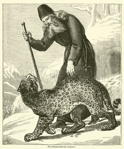 The Hermit and the Leopard. Illustration for Chatterbox (1883).