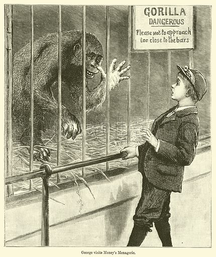George visits Moxey's Menagerie. Illustration for Chatterbox (1898).