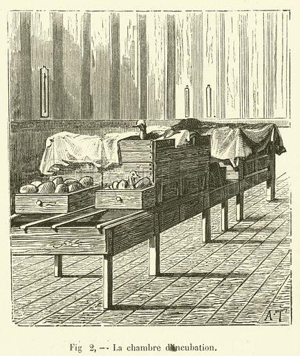La chambre d'incubation