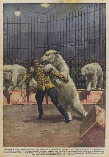 Una tragedia in un circo di Bruxelles. Dopo aver fatto eseguire alcuni esercizi ai suoi orsi polari, il domatore Lehrmann si era rivolto al pubblico per ringraziarlo degli applausi, quando una delle belve lo abbranco alle spalle e lo addento al capo, dilaniandolo con gli unghioni. Mentre la folla urlava, alcuni guardiani riuscivano poi ad allontanare la belva. Ma era tardi, poco dopo, il domatore spirava. Illustration for La Domenica del Corriere, 23 December 1928.
