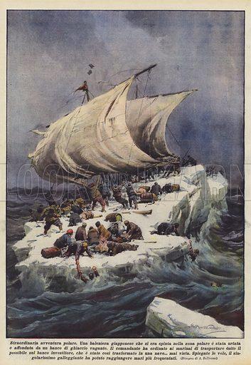 Straordinaria avventura polare