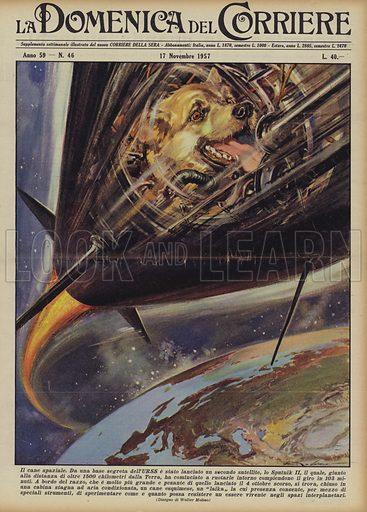 Il cane spaziale. Da una base segreta dell'URSS e stato lanciato un secondo satellite, lo Sputnik II, il quale, giunto alla distanza di oltre 1500 chilometri dalla Terra, ha cominciato a ruotarle intorno compiendone il giro in 103 minuti. A bordo del razzo, che e molto piu grande e pesante di quello lanciato il 4 ottobre scorso, si trova, chiuso in una cabina stagna ad aria condizionata, un cane esquimese, un laika la cui presenza consente, per mezzo di speciali strumenti, di sperimentare come e quanto possa resistere un essere vivente negli spazi interplanetari. Illustration for La Domenica Del Corriere, 17 November 1957.