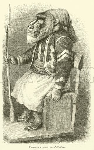 The Ape in a French Zouave's Uniform. Illustration for Chatterbox (1872).