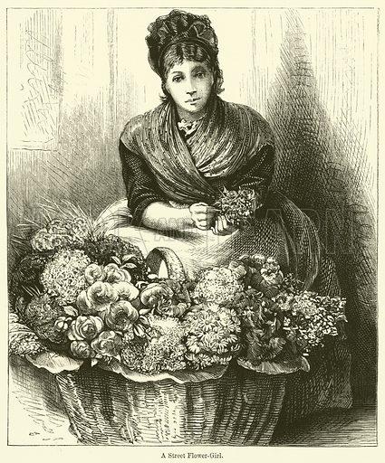 A Street Flower-Girl