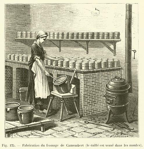 Fabrication du fromage de Camembert, le caille est verse dans les moules