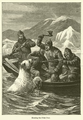 Hunting the Polar Bear. Illustration for Chatterbox (1896).