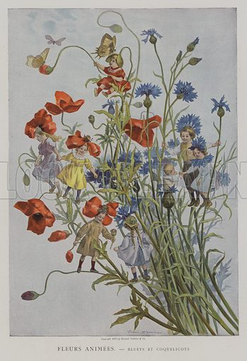 Fleurs Animees. Bluets et Coquelicots. (Animated Flowers: cornflowers and poppies). Illustration from Le Figaro Illustre, April 1901.