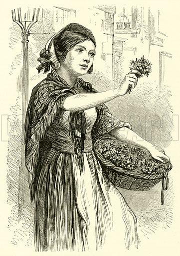 The Spring Flower-Seller. Illustration for Chatterbox (1867).