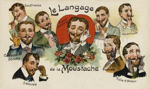 The meanings of the moustache. Postcard, early 20th century.