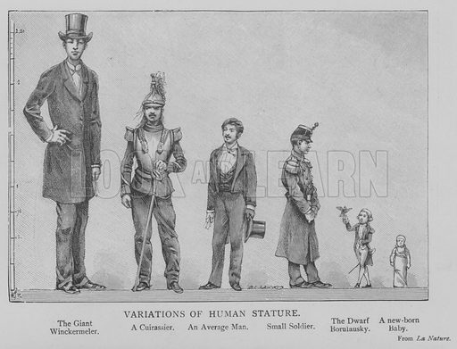 Variations of Human Stature. Illustration for The Picture Magazine, 1893.