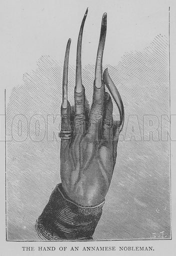 The Hand of an Annamese Nobleman. Illustration for The Picture Magazine, 1893.